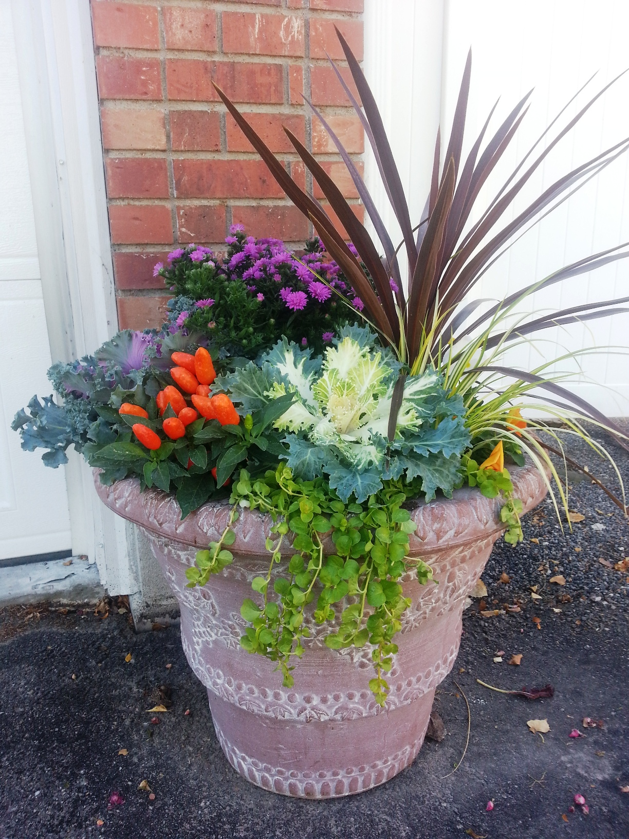 The Joys Of Container Gardening